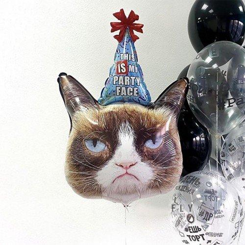 Воздушный шар кот в колпаке