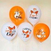"""Гелиевые шары с собакой Корги """"С Днем рождения"""""""
