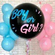 Сет шаров на гендер пати мальчик или девочка