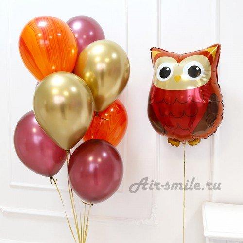 Воздушные шарики с совой