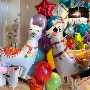 """Комплект шаров из коллекции Лама Альпака """"Сладкая парочка"""""""