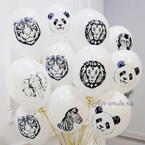 Гелиевые шарики с изображением слона тигра льва панды обезьяны зебры